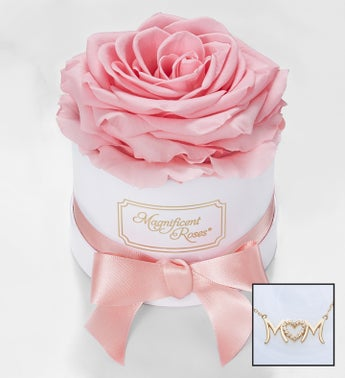 Magnificent Roses Preserved Pink Rose and Necklace